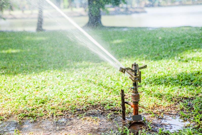 Садовничая лужайка sprinkler распыляя вода над зеленой травой в стоковые фото