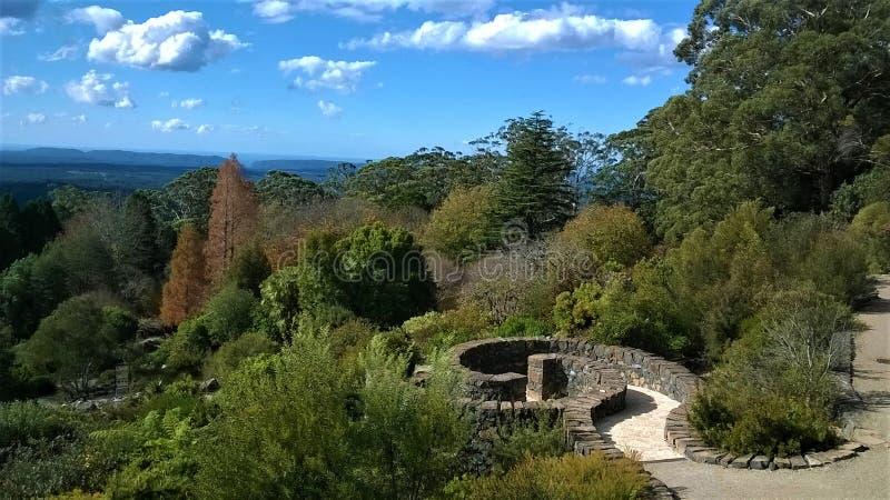 Сады голубых гор ботанические в NSW Австралии стоковые фото