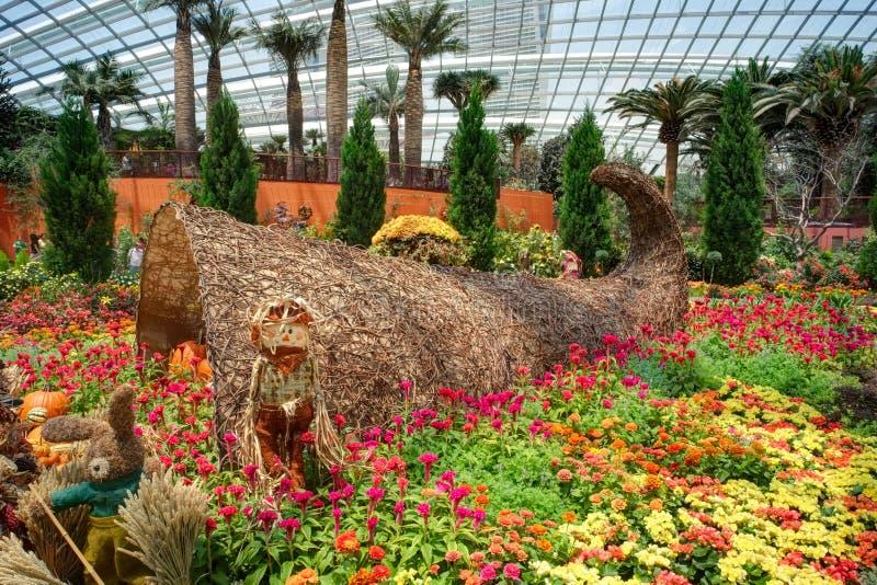 Сады заливом, куполом цветка: Хлебоуборка осени стоковая фотография rf
