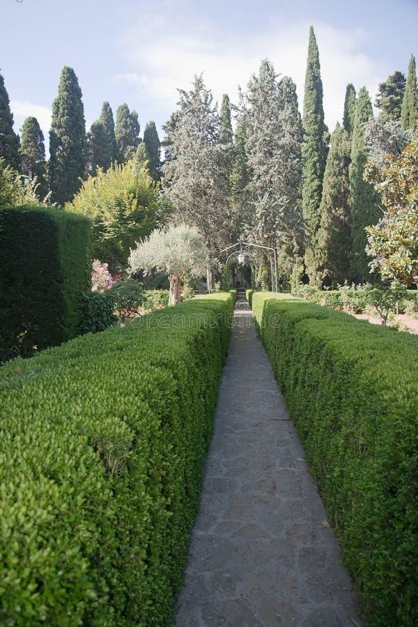 Сады монастыря Cartuja с розами стоковая фотография rf