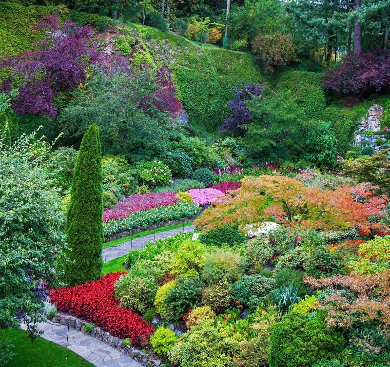 Сады Butchart - комплект изумительно красивых садов на острове ванкувер, Канаде Sunken сад - центральное и больше всего стоковое фото