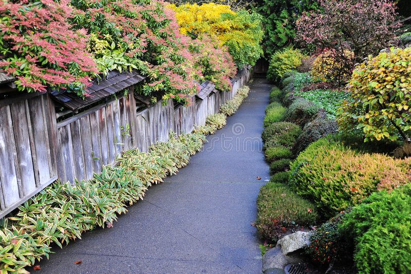 сады butchart осени стоковая фотография rf