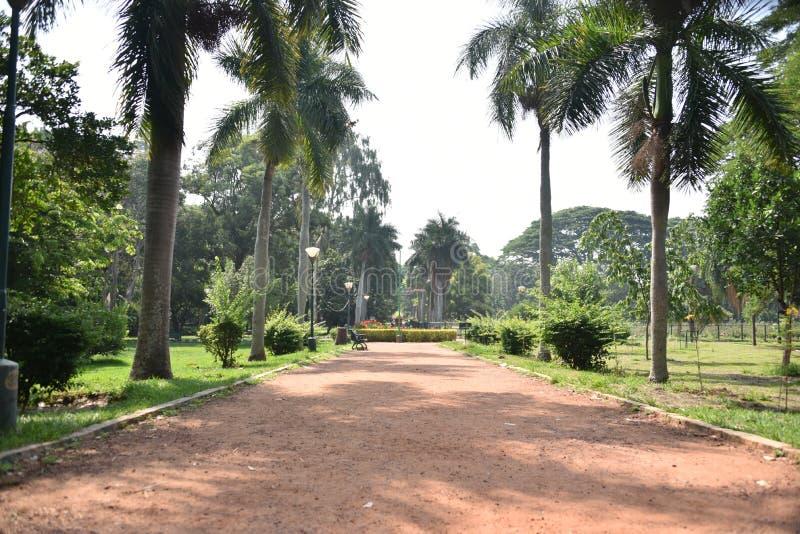 Сады Lalbagh ботанические, Бангалор, Karnataka стоковое изображение