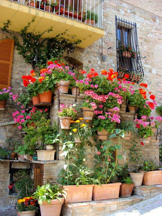 сад балкона стоковая фотография