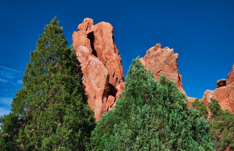 Сад богов, Колорадо-Спрингс с образованиями сосен и песчаника и известняка стоковые фото
