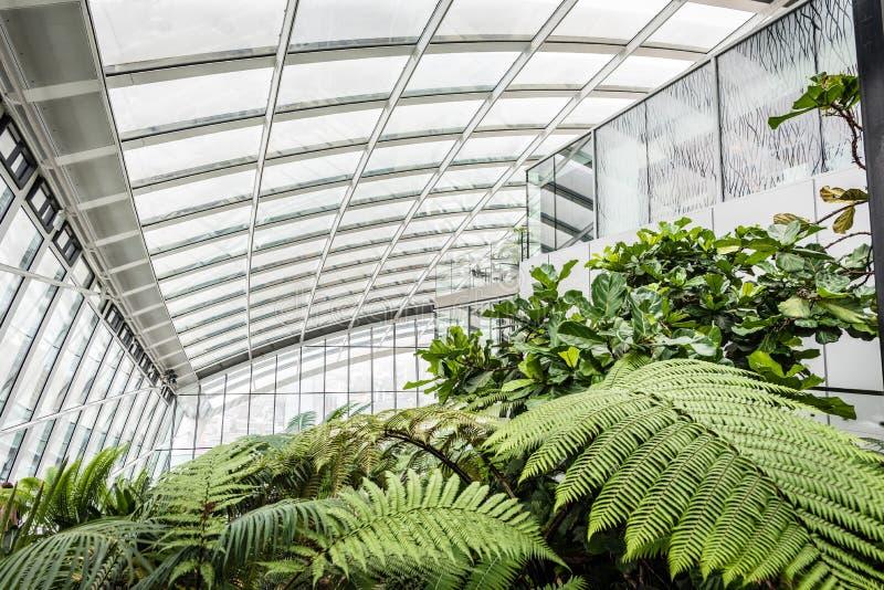 Сад в здании рации, Лондон неба стоковые фотографии rf