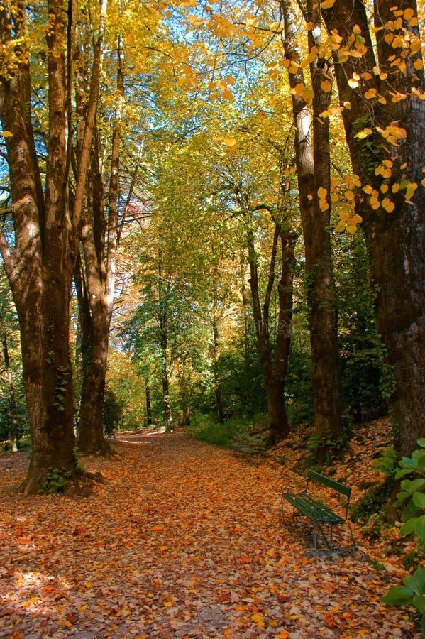 Сад в национальном парке Peneda Geres стоковая фотография rf