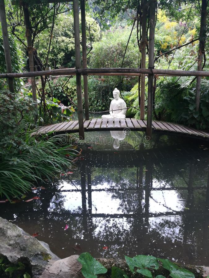 Сад дзэна мира природы стоковое фото