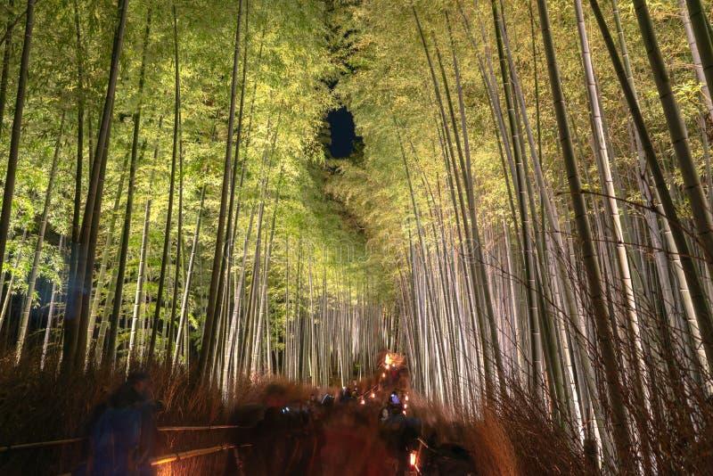 Сад дзэна рощи Arashiyama бамбуковый освещает вверх вечером стоковая фотография