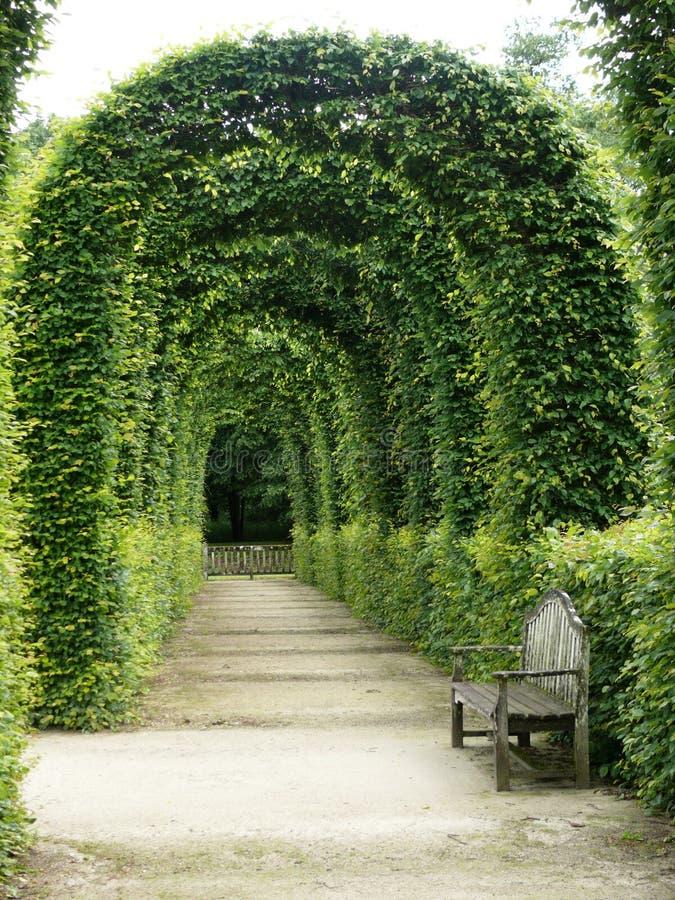 Сад замка ренессанса Chamerolles в Луаре во Франции стоковое изображение
