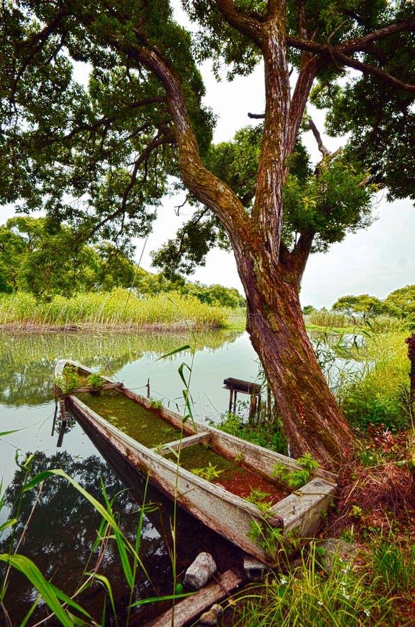 Сад и река ` s Японии секретный стоковые фотографии rf