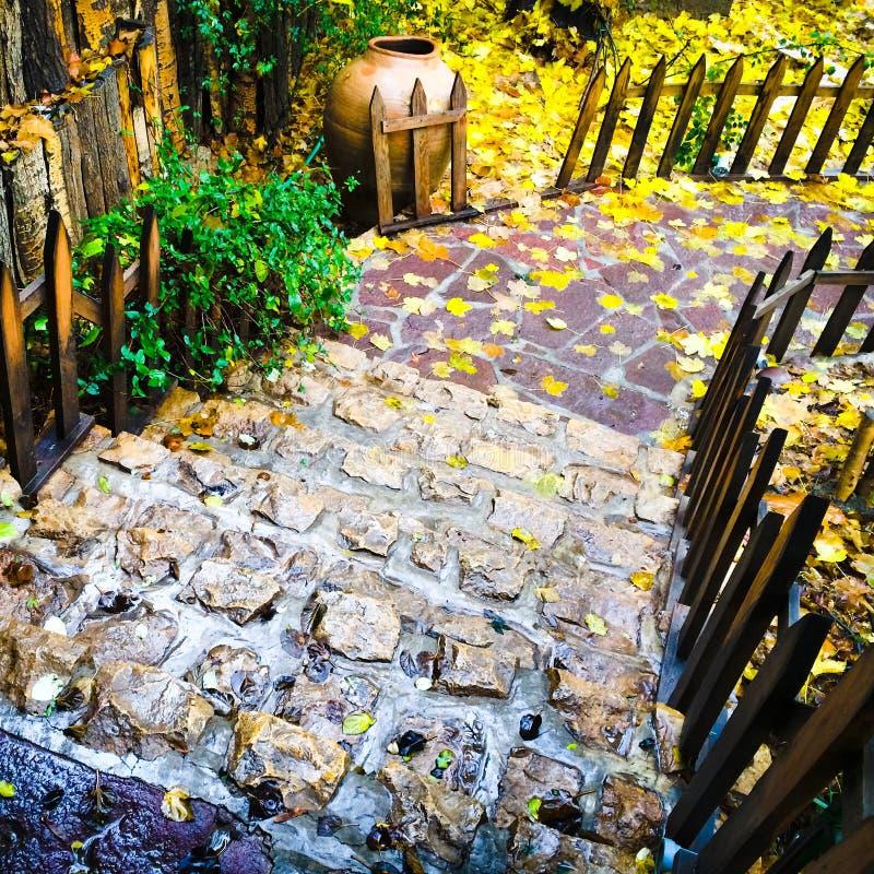 Сад осени стоковые изображения rf