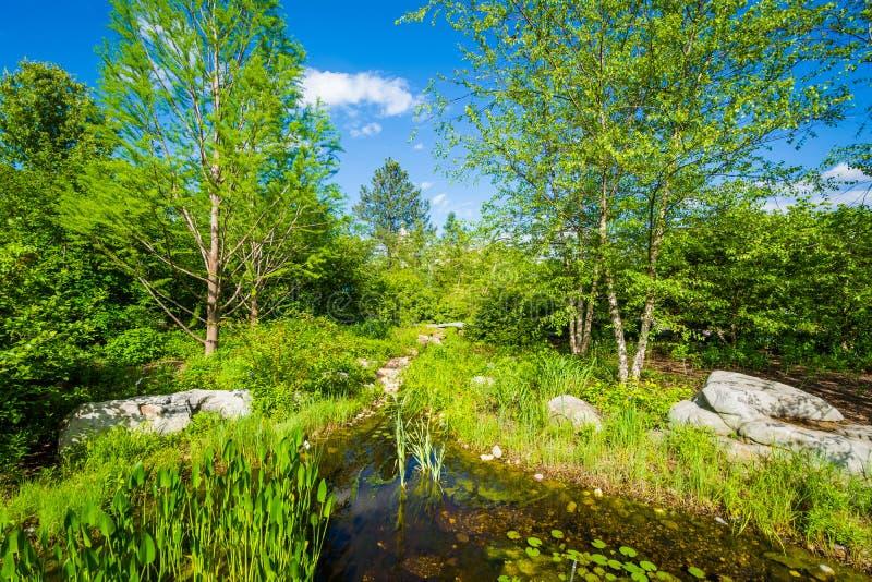 Сад Соединенных Штатов ботанический в Вашингтоне, DC стоковое фото rf