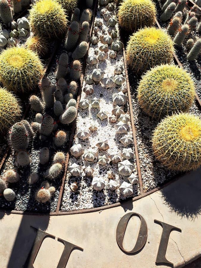 Сад солнечных часов в садах пустыни ботанических стоковое изображение