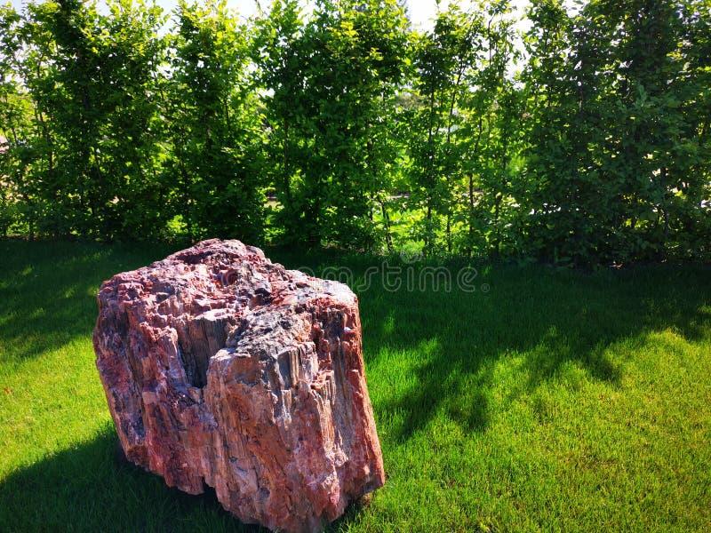 Сад с декоративным каменным солнечным светом стоковые изображения rf