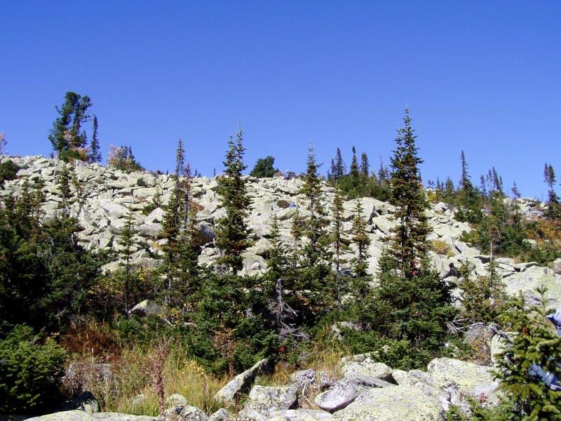 Сад с камнями, Сибирь стоковое изображение rf