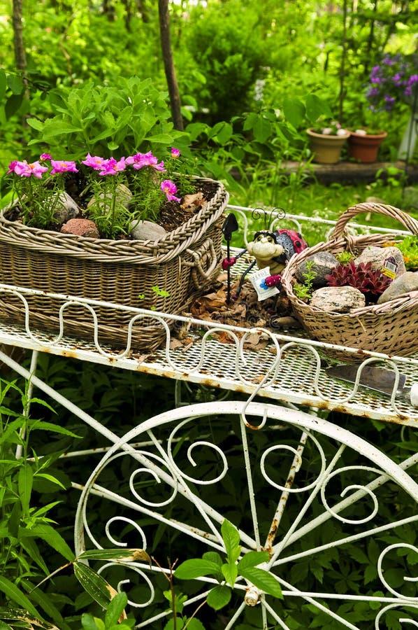 сад цветка тележки стоковые изображения