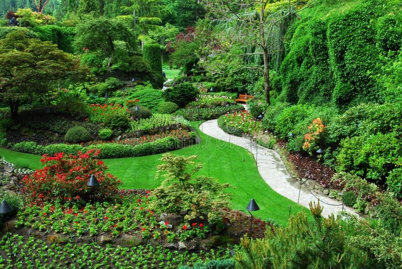 сад butchart садовничает sunken стоковое изображение rf