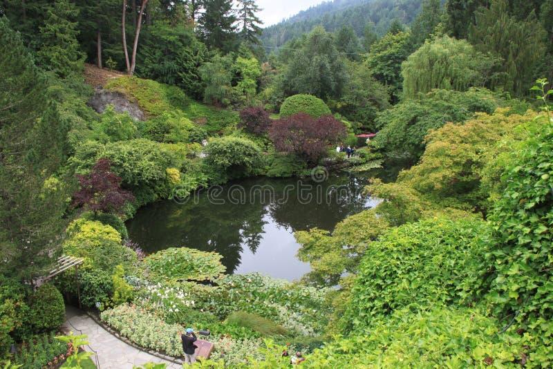 сад butchart стоковая фотография rf