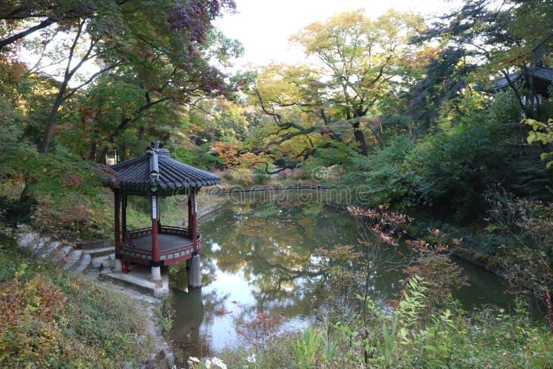 Сад Changdeokgung всемирного наследия ЮНЕСКО Сеула секретный, Южная Корея стоковое изображение rf