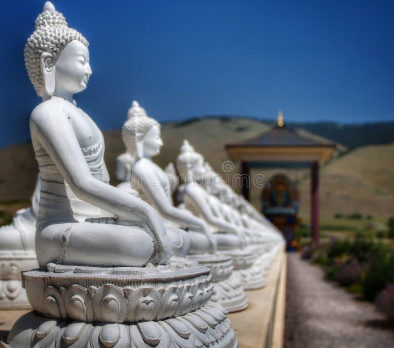 Сад Ewan тысячи Buddhas, Arlee, MT стоковые изображения rf
