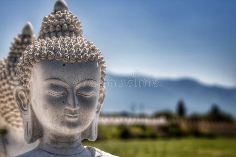 Сад Ewan тысячи Buddhas, Arlee, MT стоковое изображение rf