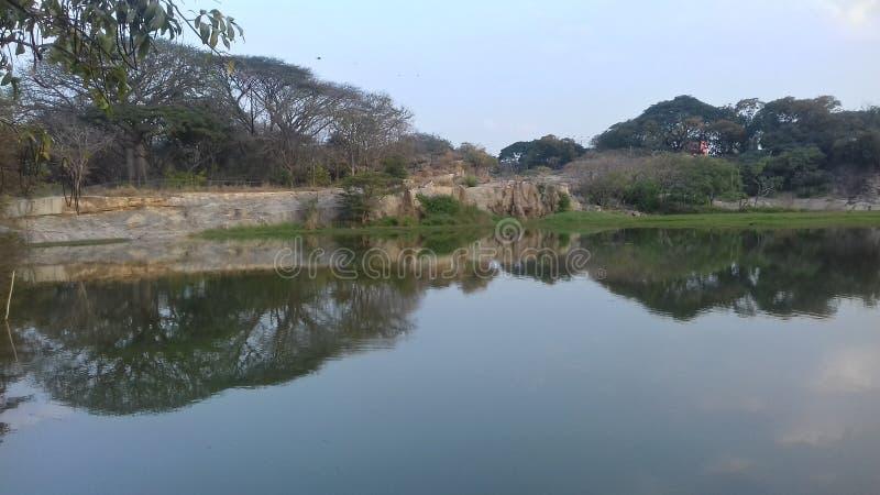 Сад Lalbagh ботанический, Бангалор стоковые фотографии rf