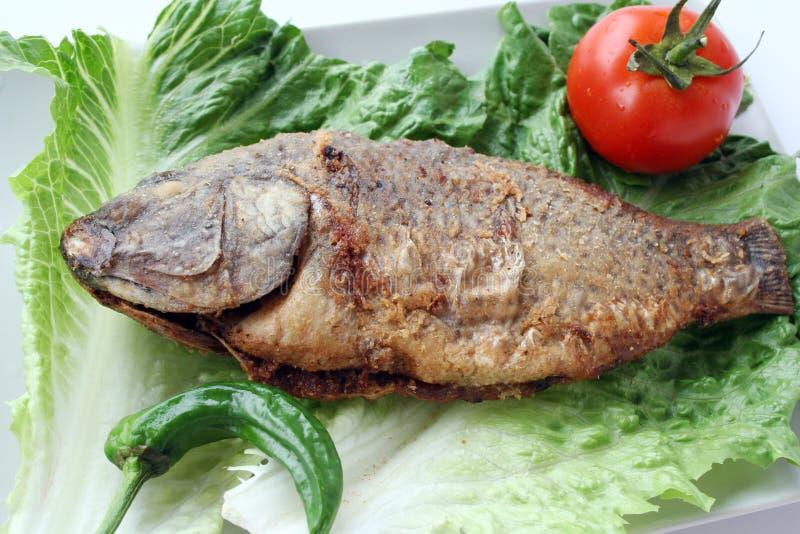 салат зажаренный рыбами стоковое фото