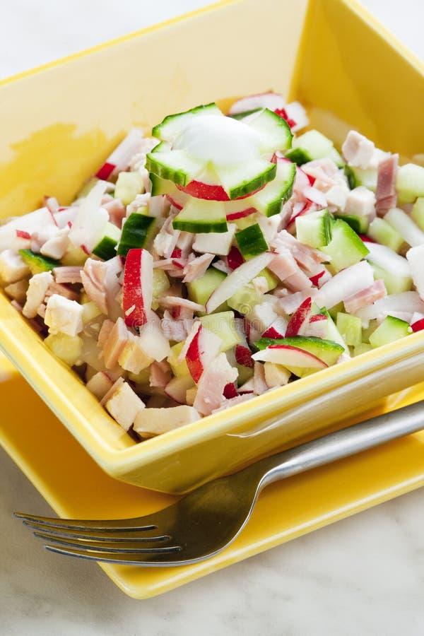 салат из курицы с редисками и огурцом стоковые изображения rf