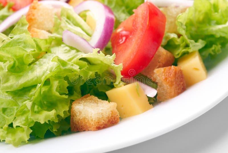 Салат на белой плите стоковая фотография rf