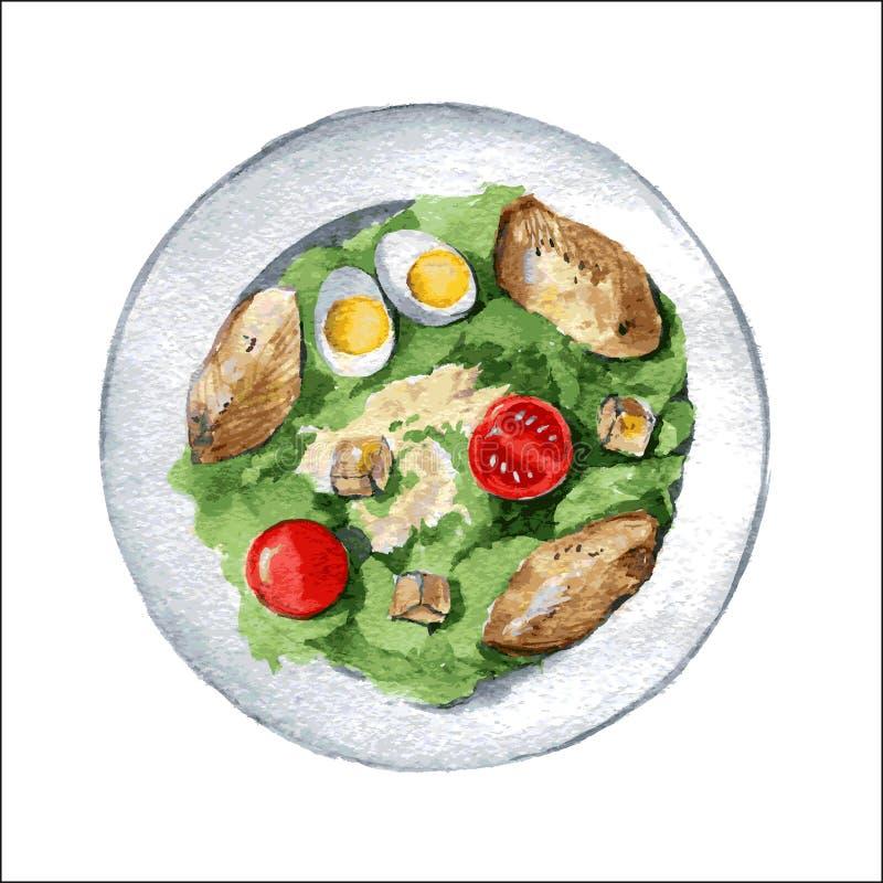 Салат цезаря с куриной грудкой, гренками, яичками и томатами вектор иллюстрация штока