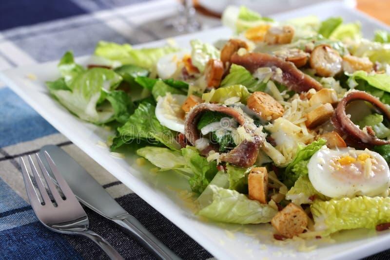 салат 3 цезарь стоковые фото