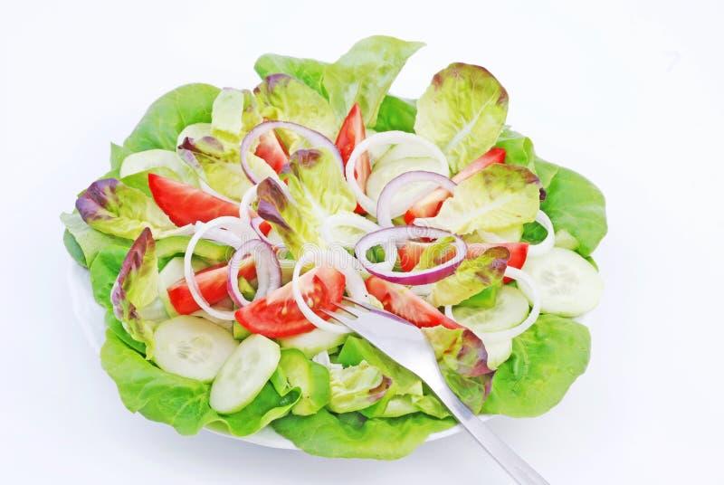 салат стоковые фотографии rf