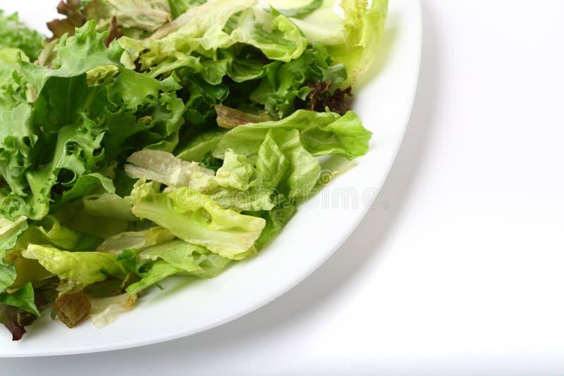 Download салат стоковое фото. изображение насчитывающей свет, свеже - 6863038