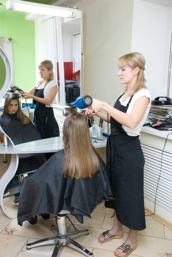Download салон волос стоковое изображение. изображение насчитывающей бобра - 6853605