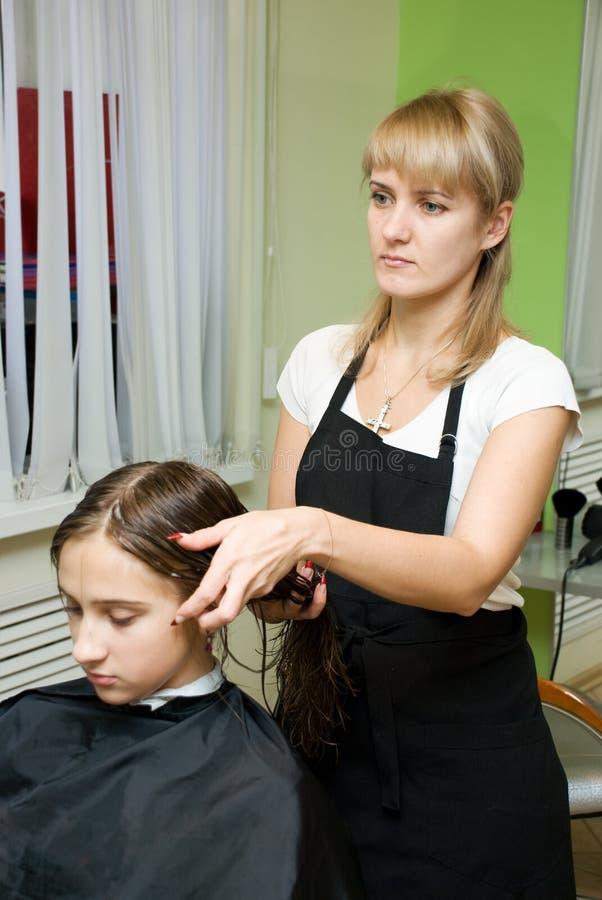 Download салон волос стоковое изображение. изображение насчитывающей способ - 6866597