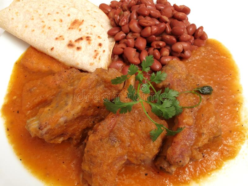 сальса мексиканского свинины обеда красное пряное стоковые изображения rf