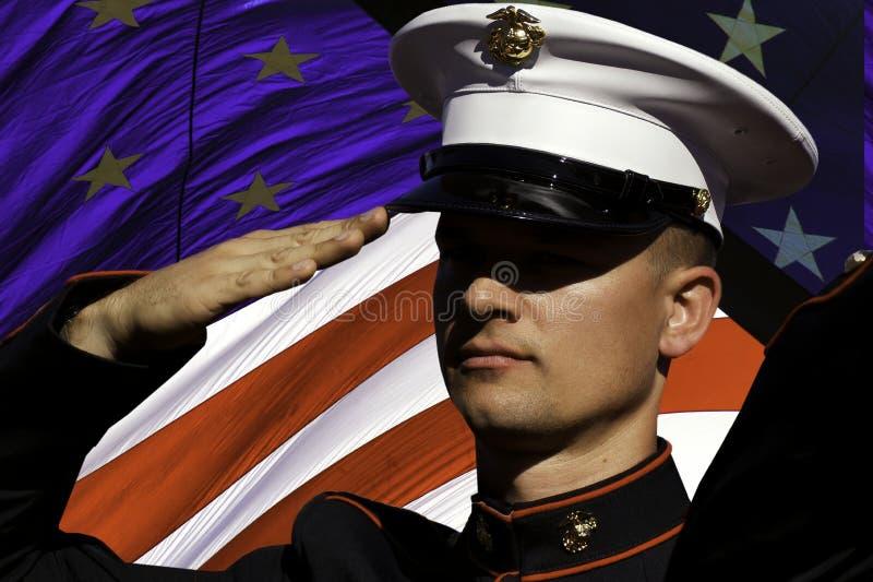 Салют дня ветеранов, вспоминает, и празднует стоковое фото rf