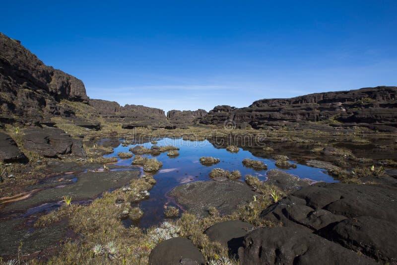 Саммит держателя Roraima, странного мира сделанного из вулканического st черноты стоковые фотографии rf