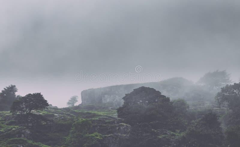 Саммит скалистой горы в тяжелом тумане стоковая фотография rf
