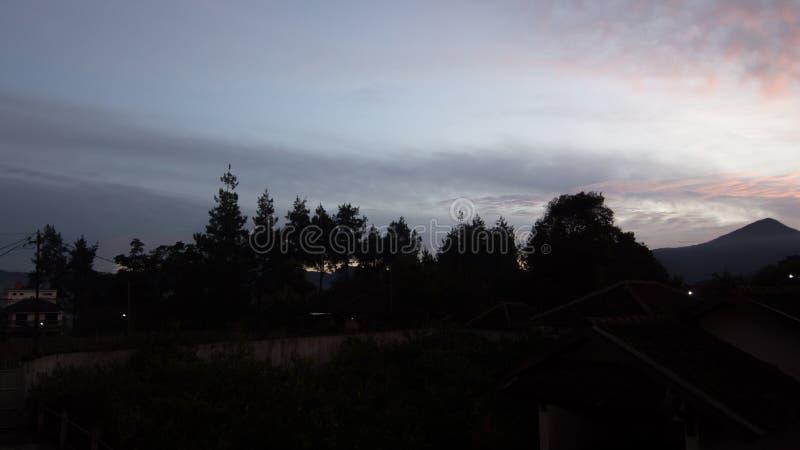 Самое лучшее утро essenstial стоковое изображение rf