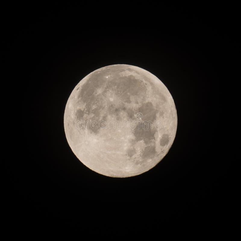Самое лучшее фото луны - редкая голубая кровь Supermoon стоковые изображения