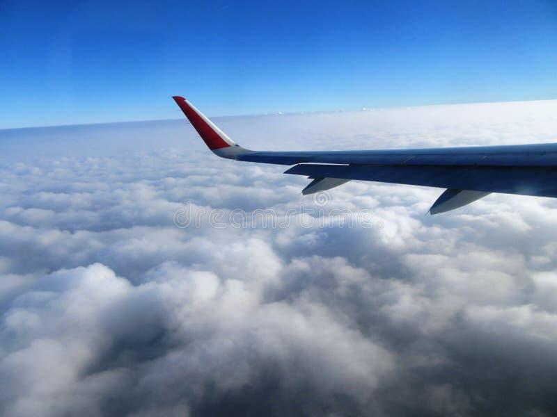 самолетом стоковые фото
