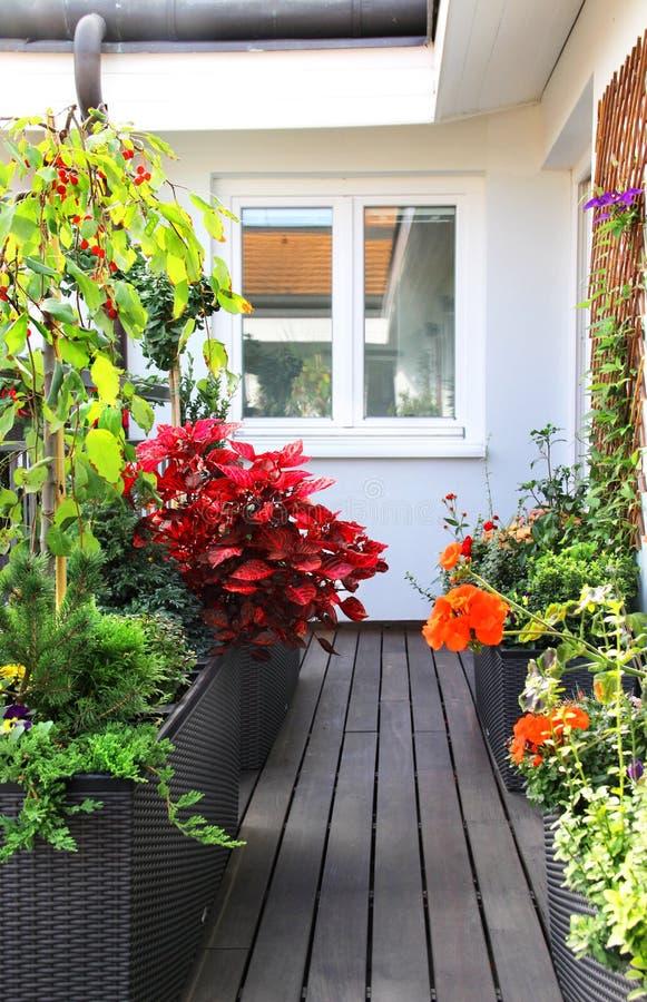 Самомоднейшая красивейшая терраса с много цветками стоковые фото