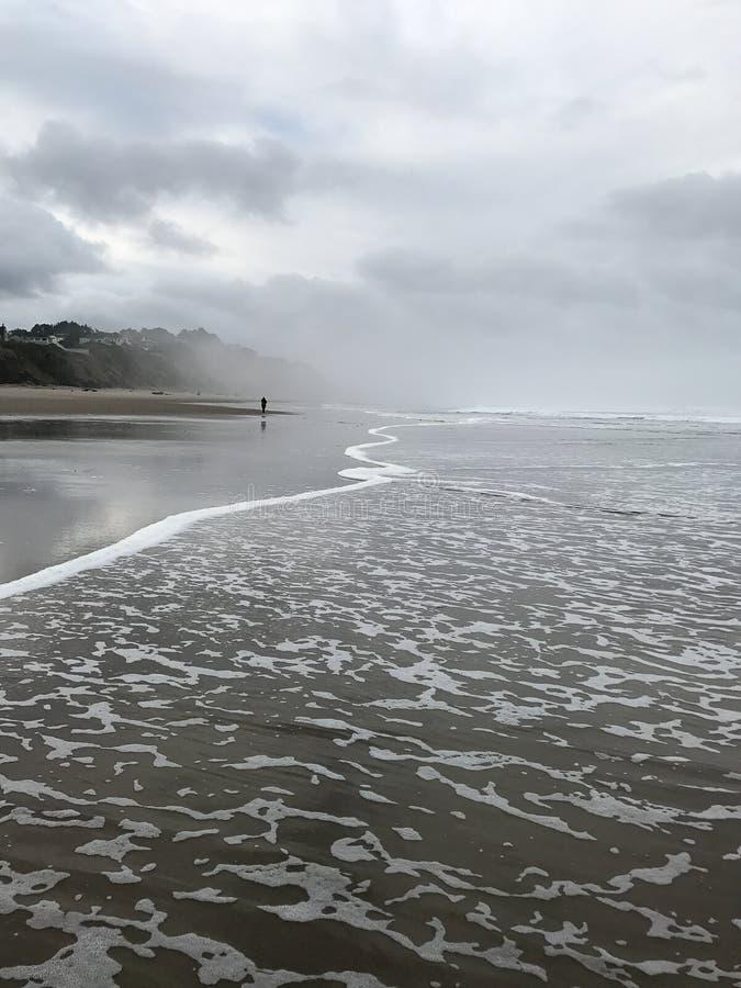 Самостоятельно на пляже стоковое фото rf