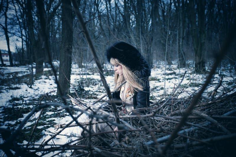 Самостоятельно в древесине стоковая фотография rf