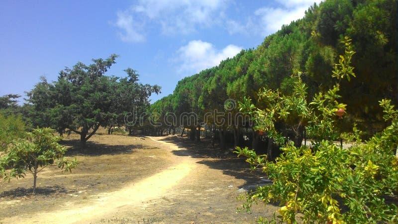 Самые красивые места Кипра стоковые изображения rf
