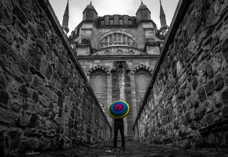 самый большой индюк selimiye мечети edirne стоковое изображение rf