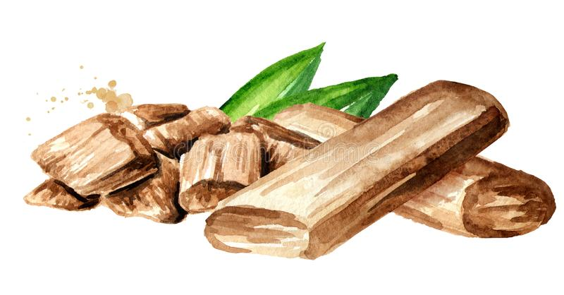 Сандаловые деревья или ручки и порошок Chandan с зелеными листьями Иллюстрация акварели нарисованная рукой, изолированная на бело иллюстрация штока