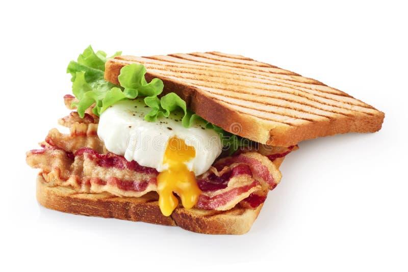 Сандвич при бекон, краденное яичко и салат изолированный на белом b стоковое фото rf